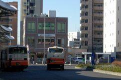【移転】八潮駅前よつば耳鼻咽喉科