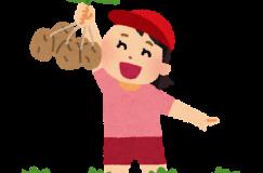 6/23じゃがいも収穫体験 収穫したじゃがいもで菊水堂のポテトチップを味わおう