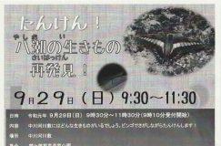 9/29 たんけん!八潮の生きもの再発見!