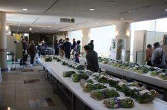 第45回 八潮市農業祭をレポート